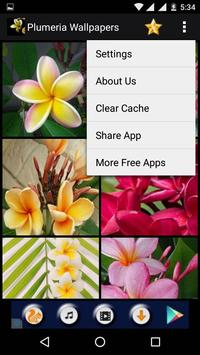 Plumeria Flower HD Wallpapers screenshot 14