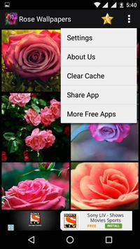 Rose HD Wallpapers screenshot 3