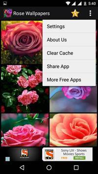 Rose HD Wallpapers screenshot 22