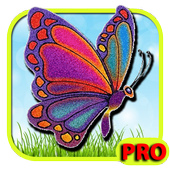 Butterfly Game icon