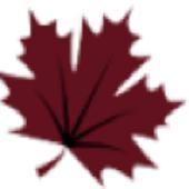 DMG Energy icon