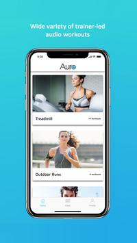 Auro screenshot 1