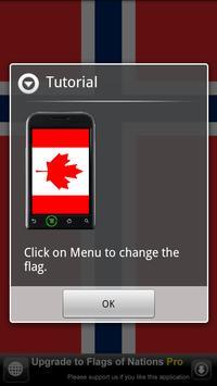 Flags of Nations screenshot 3