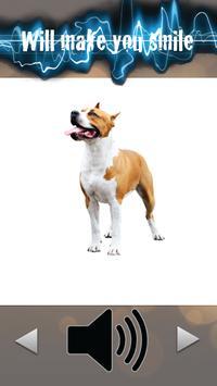 Match Doggy Sounds screenshot 1