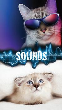 Kitty Purr Sounds poster