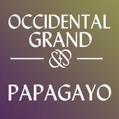 Hotel Grand Papagayo icon