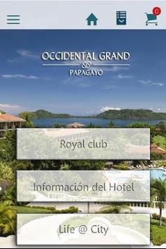 Hotel Grand Papagayo poster