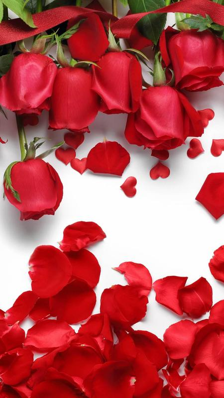 Rose Wallpaper Floral Flower Background Rosely For Android Apk