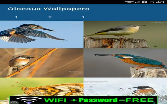 Bird Wallpapers screenshot 1