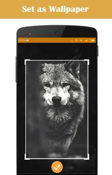 Wolf Wallpaper screenshot 2