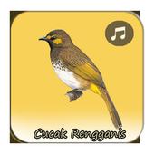 Kicau Cucak Rengganis Fighter icon