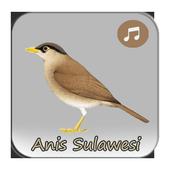 Kicau Anis Sulawesi Gacor icon