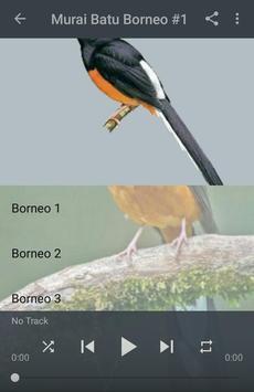 Kicau Murai Batu Borneo screenshot 1