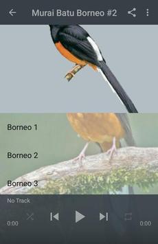 Kicau Murai Batu Borneo screenshot 2