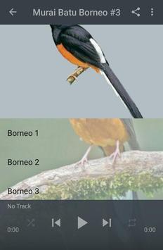 Kicau Murai Batu Borneo screenshot 3