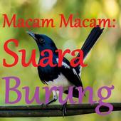 MACAM MACAM SUARA KICAU BURUNG. icon