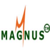 magnus it icon