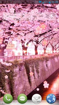 Sakura Flowers Live Wallpaper apk screenshot
