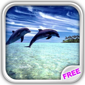 Wonderful Dolphins Water Touch icon