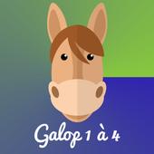 GalopQuizz - Chevaux & Poneys icon