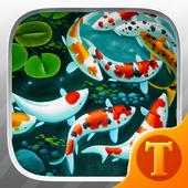 Lively Koi Fish 3D Theme Wallpapers icon