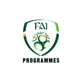 FAI Republic of Ireland icon