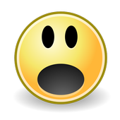 BinarySki icon