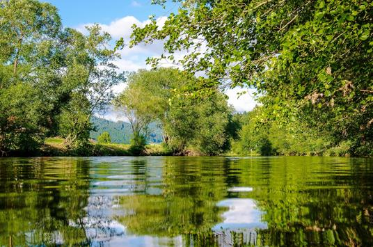 10000 nature wallpapers hd offline for android apk - Nature wallpaper apk ...