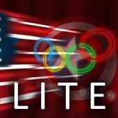 USA Flag Stylized LITE icon
