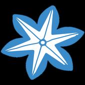 사차인치몰 icon