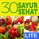 30 Resep Sayur Sehat Lite icon
