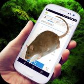 Mice On Screen Terrible Joke icon