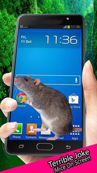 Mice On Screen Terrible Joke poster