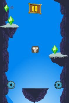 Monkey Jumper poster