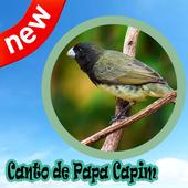 Canto De Papa Capim Mp3 icon