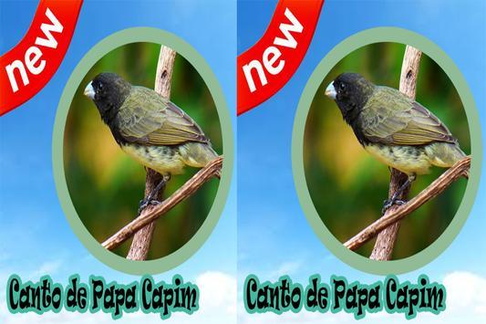 Canto De Papa Capim Mp3 apk screenshot