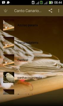 Canto Canario Belga Campainha apk screenshot