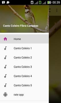 Canto Coleiro Fibra Campeao poster