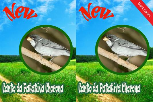 CANTOS DA PATATIVA CHORONA MP3 apk screenshot