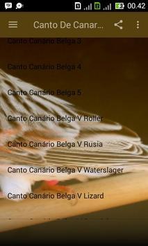Canto de Canario Belga apk screenshot