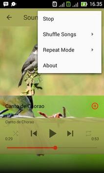 Canto de Chorao Tui-Tui apk screenshot