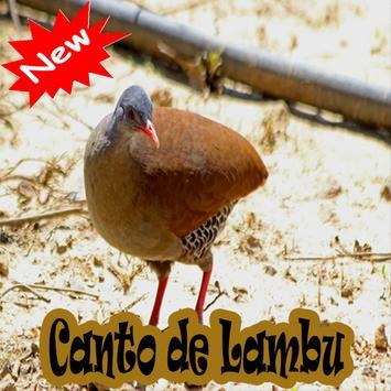 CANTOS DE LAMBU BRASILIO poster
