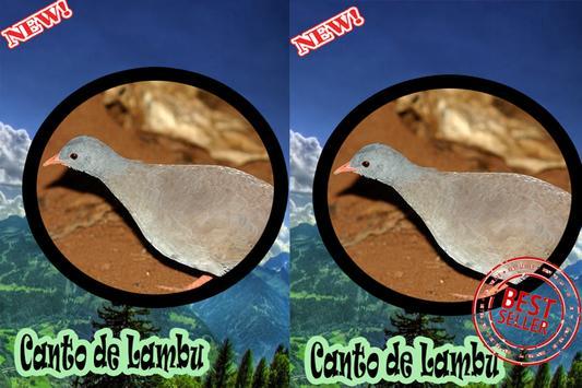 CANTOS DE LAMBU BRASILIO screenshot 4