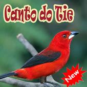 Cantos De Tiesangue Brazilios Mp3 icon