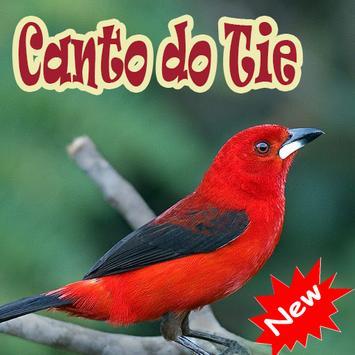 Cantos De Tiesangue Brazilios Mp3 poster
