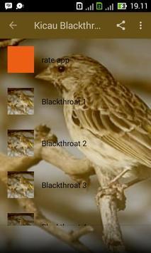 Kicau Blackthroat Master apk screenshot