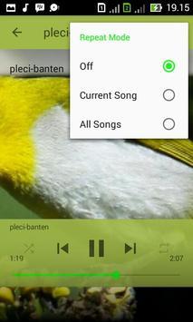 Kicau Master Pleci apk screenshot