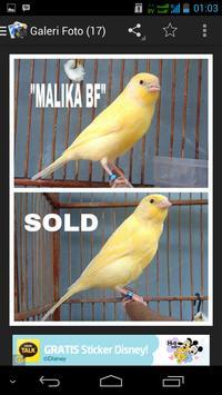 Malika Bird Farm screenshot 4