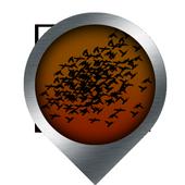 Bird Safari icon
