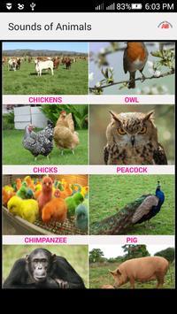 Sounds of Animals and Birds apk screenshot